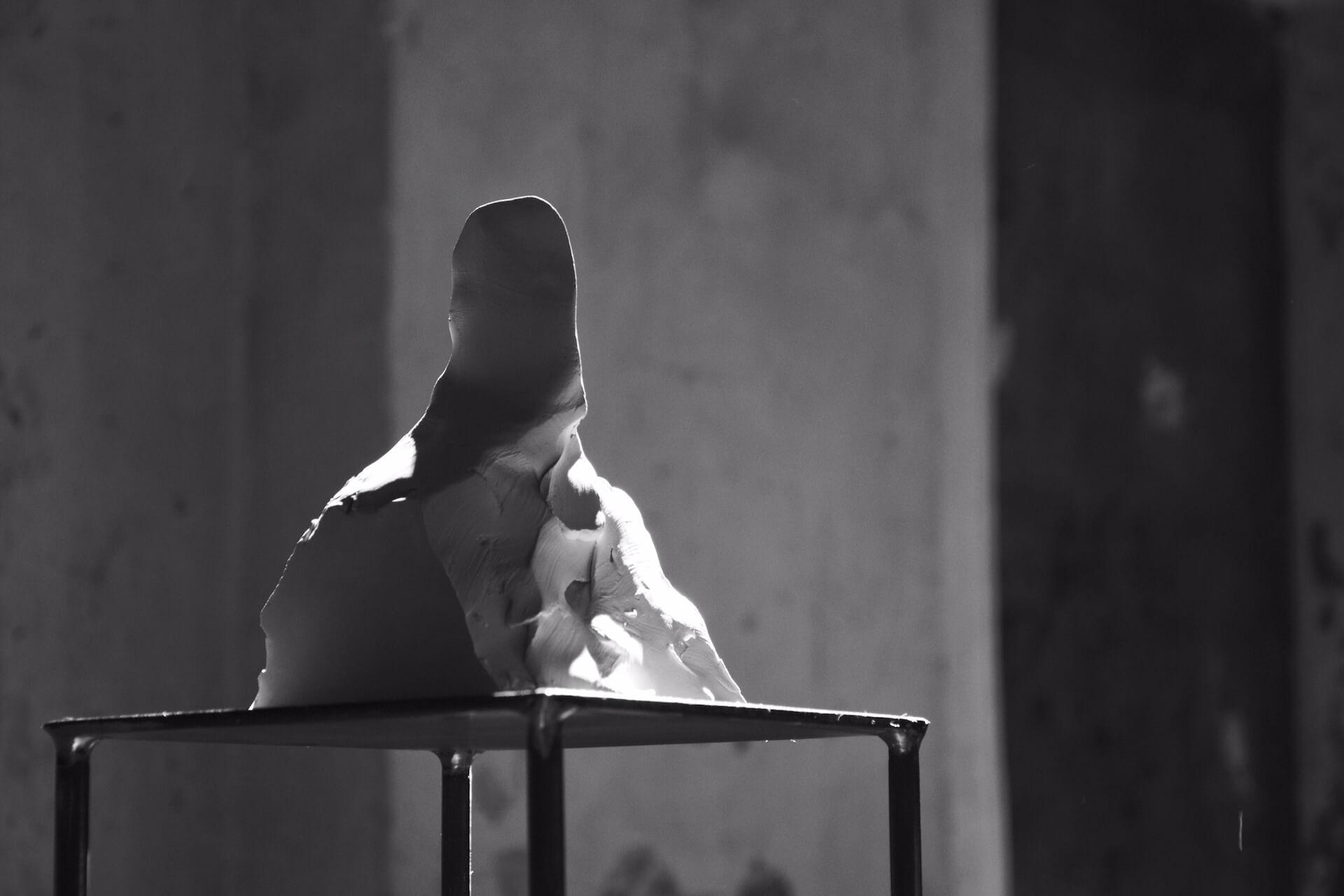 Federico Branchetti - Sculture - Piccolo busto, terracotta 2017