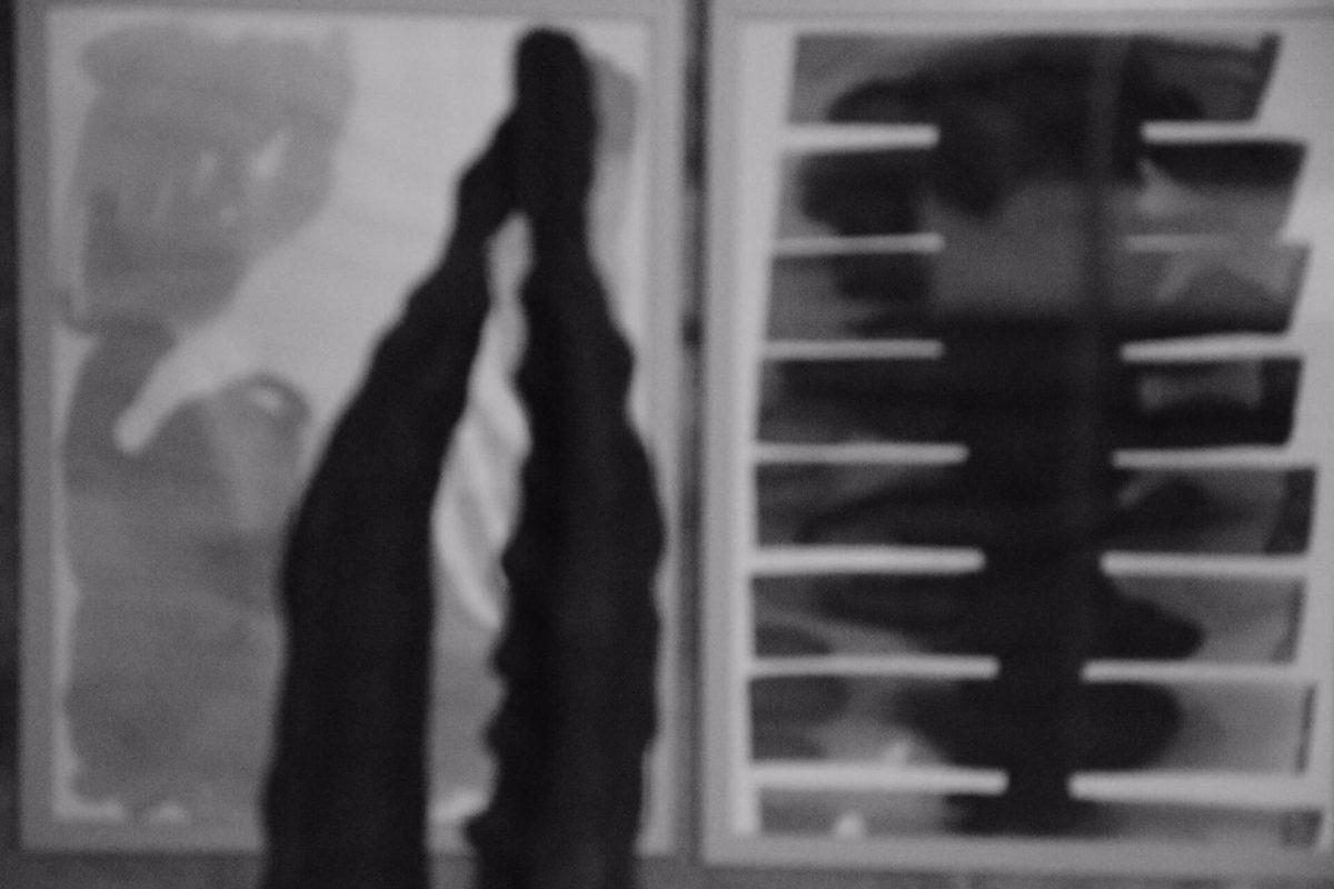 Federico Branchetti - Esposizioni - esserci,essere qui4