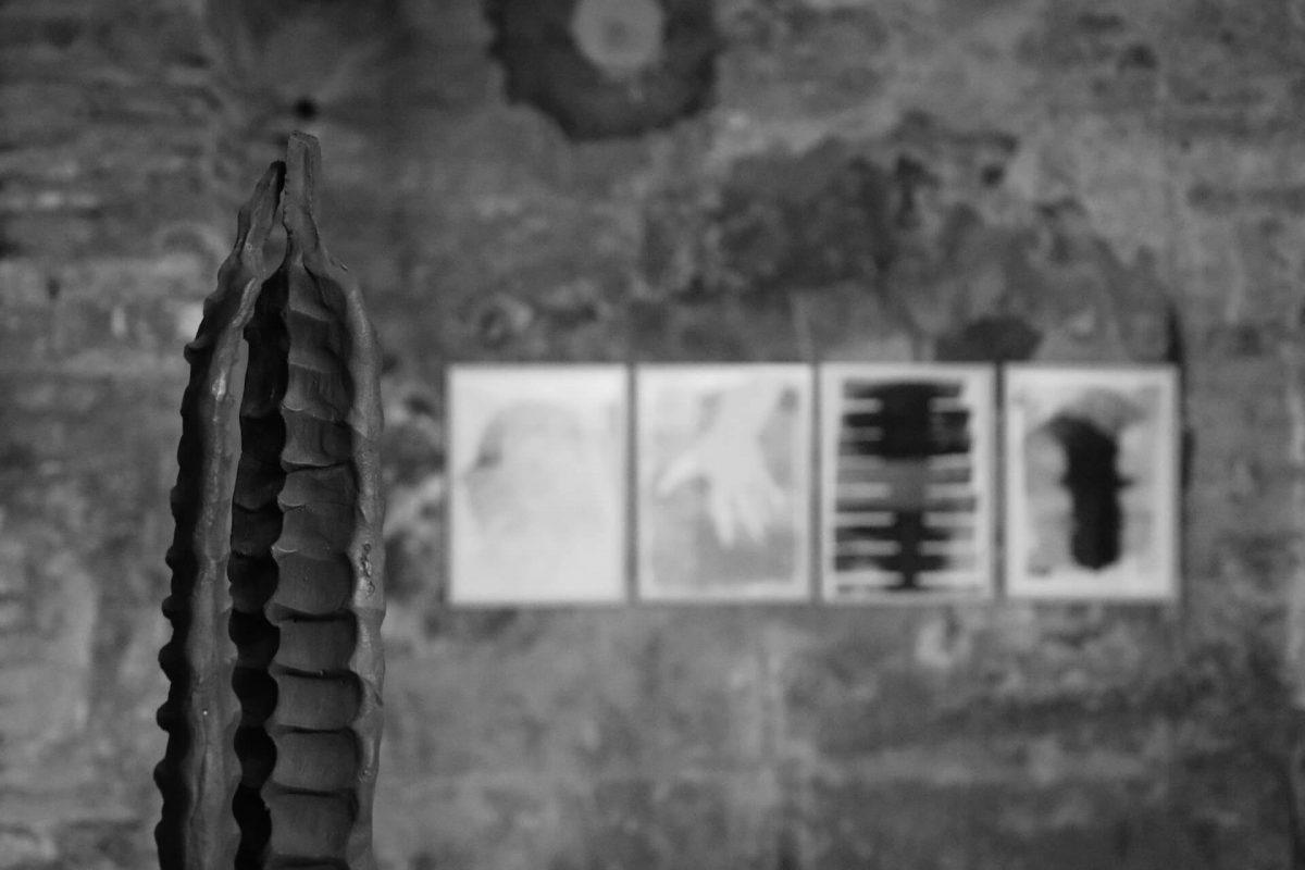 Federico Branchetti - Esposizioni - esserci,essere qui6