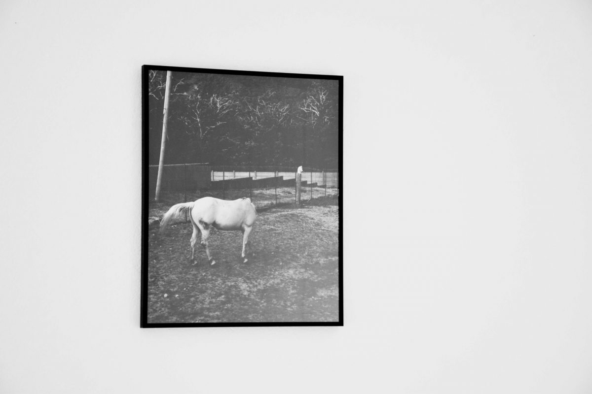 Federico Branchetti - La terza Studio visit - a cura di Alessandra Rizzi 6